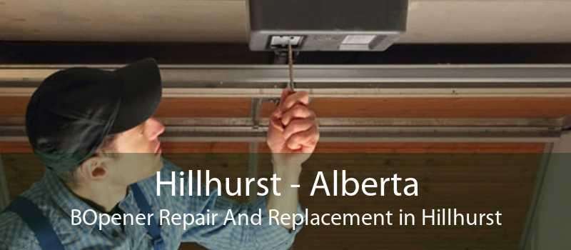 Hillhurst - Alberta BOpener Repair And Replacement in Hillhurst