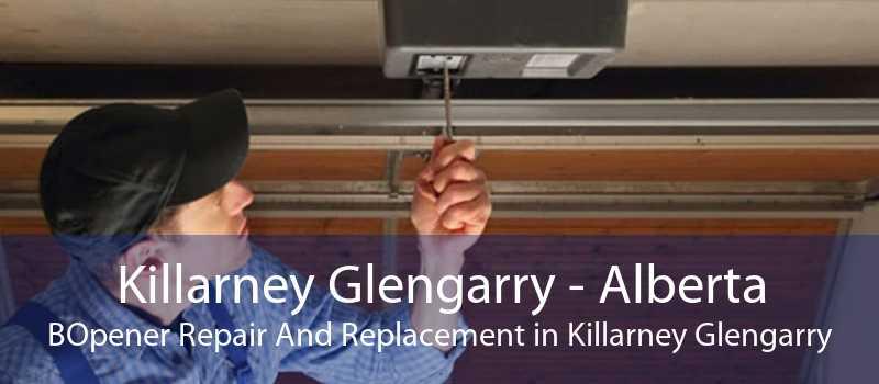 Killarney Glengarry - Alberta BOpener Repair And Replacement in Killarney Glengarry