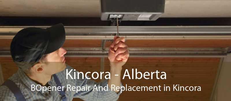 Kincora - Alberta BOpener Repair And Replacement in Kincora