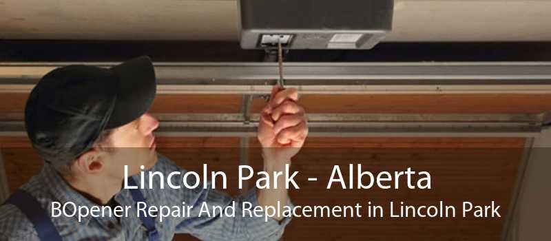 Lincoln Park - Alberta BOpener Repair And Replacement in Lincoln Park