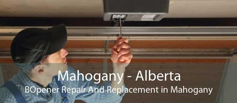 Mahogany - Alberta BOpener Repair And Replacement in Mahogany