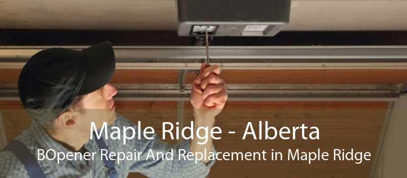 Maple Ridge - Alberta BOpener Repair And Replacement in Maple Ridge