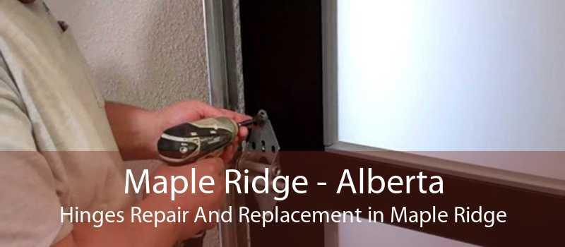 Maple Ridge - Alberta Hinges Repair And Replacement in Maple Ridge