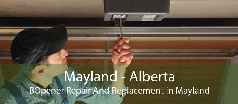 Mayland - Alberta BOpener Repair And Replacement in Mayland