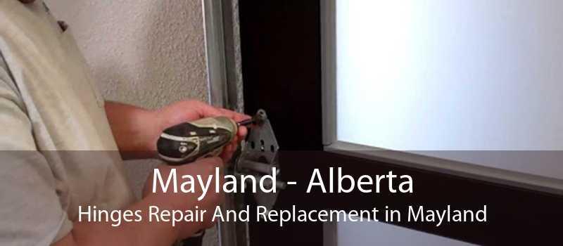 Mayland - Alberta Hinges Repair And Replacement in Mayland