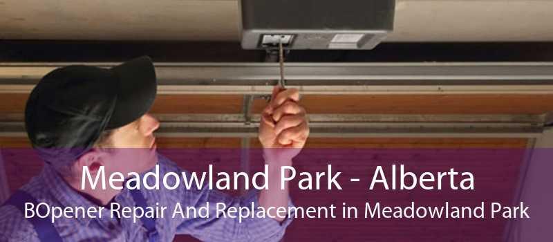 Meadowland Park - Alberta BOpener Repair And Replacement in Meadowland Park