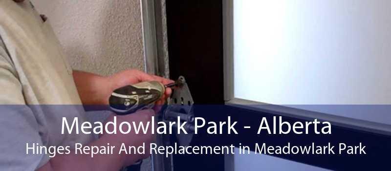 Meadowlark Park - Alberta Hinges Repair And Replacement in Meadowlark Park