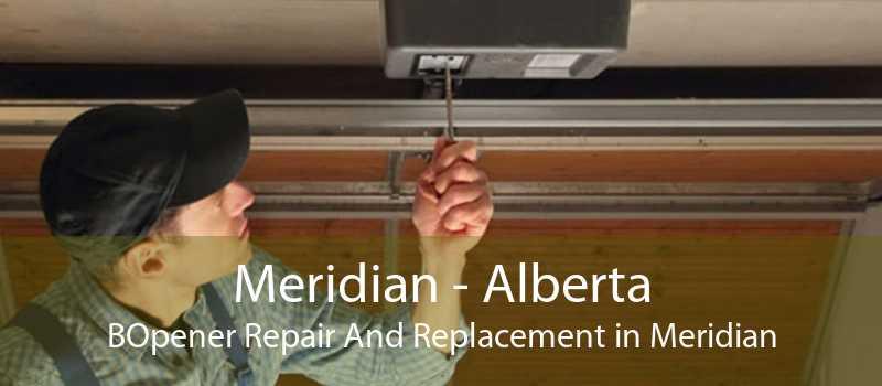 Meridian - Alberta BOpener Repair And Replacement in Meridian