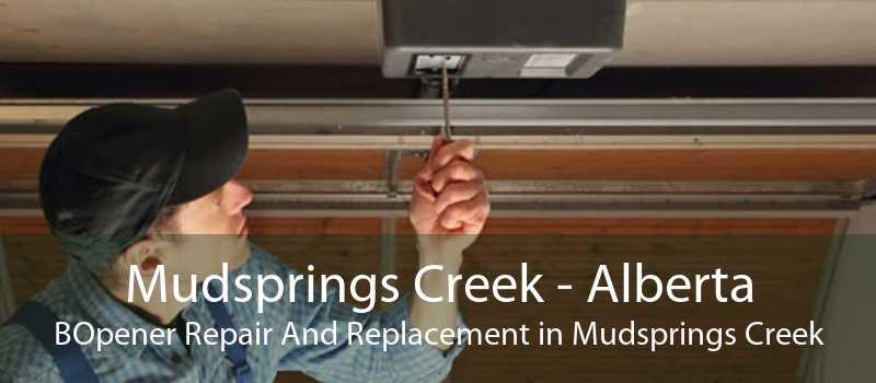 Mudsprings Creek - Alberta BOpener Repair And Replacement in Mudsprings Creek