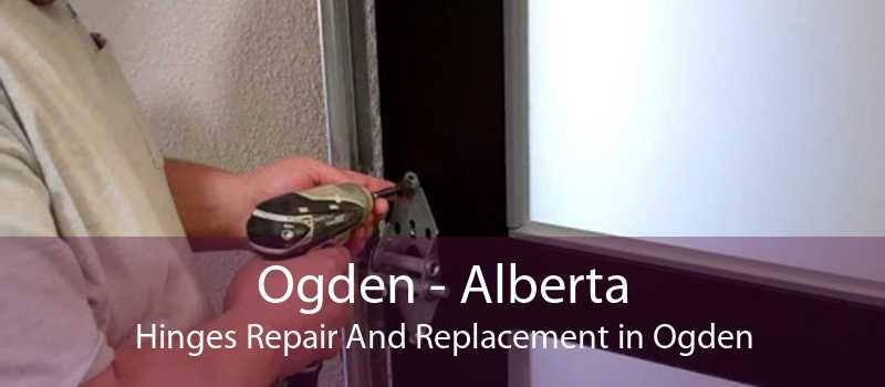 Ogden - Alberta Hinges Repair And Replacement in Ogden