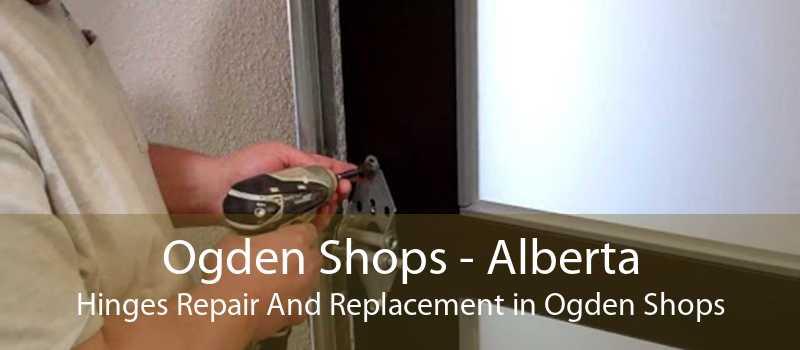 Ogden Shops - Alberta Hinges Repair And Replacement in Ogden Shops